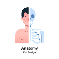 Anatomy Flat Illustration