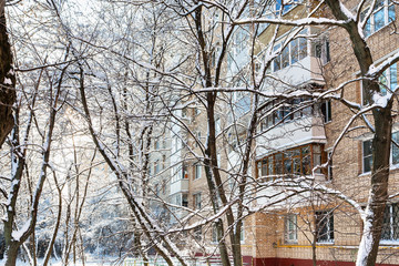 urban yard in residential district in winter