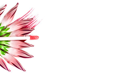 Fototapeta Pink lip gloss and flowers on on white isolated background. Сonceptual photo about make-up cosmetics