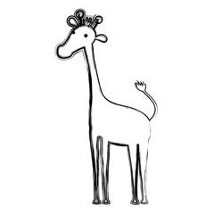 grunge giraffe safari wild animal