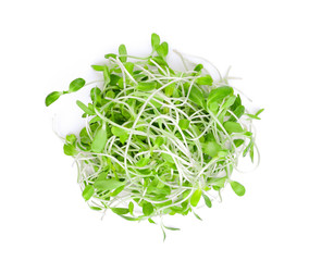 fresh green young sunflower sprouts isolated on white background, top view, flat lay