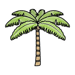 doodle tropical palm nature tree style
