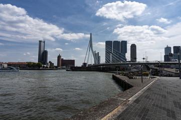 Skyline with Erasmus bridge in summer, Rotterdam