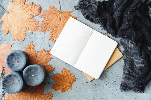 Autumn flat lay composition on a grey concrete background