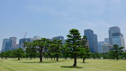Skyline von Tokyo, Japan