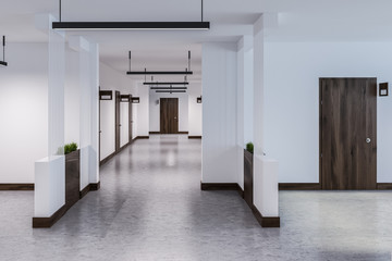 Long hotel or office corridor with many doors