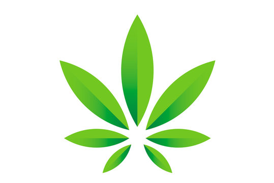 Cannabis marijuana hemp green leaf flat symbol or logo design. Cannabis green silhouette ecology logo. Hemp emblem for the logo design packaging of goods, food, for the creation of printed products.