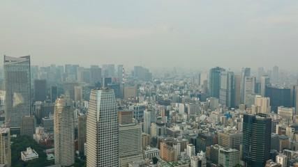 Tokyo / Tokio Stadtübersicht, Megametropole von oben
