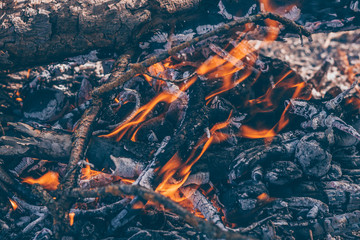 Bonfire with bright tongues of flame