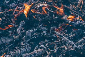Fire as a source of heat and life