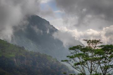 tropische Berglandschaft mit Wolken, Regenwald