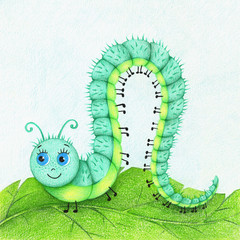 hand drawn picture of funny caterpillar on the leaf by the color pencils