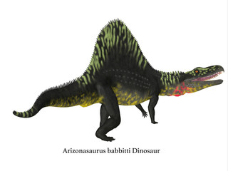 Arizonasaurus Dinosaur Tail - Arizonasaurus was a carnivorous theropod dinosaur that lived in Arizona during the Triassic Period.