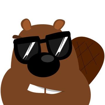 Biber mit Sonnenbrille