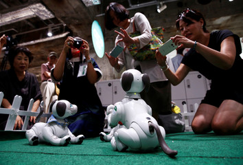 Owners of AIBO robot dogs take picture of their AIBo robots at Sony Corp's entertainment robot AIBO's fan meeting in Tokyo