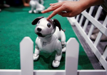 A owner pets her AIBO robot dog at Sony Corp's entertainment robot AIBO's fan meeting in Tokyo