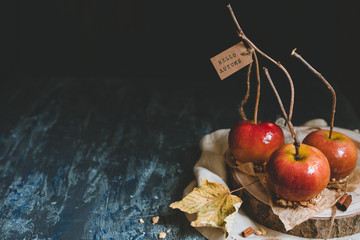 Autumn background with copy space. Traditional caramel apples with brunch sticks.
