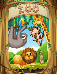 Wild animals in the zoo