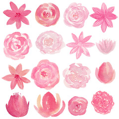 Set of hand painted watercolor flowers in pink color. Isolated clipart for wedding, invitations, blogs, template card.