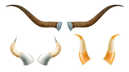 Set of horns of wild animals. Vessels for wine and alcohol on a white background. Vector illustration of nature objects for design