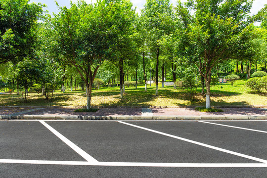 Urban open-air parking lot and park trees landscape in summer