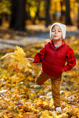 Cute, happy, white boy in red shirt smiling and playing with bouquet of yellow leaves. Little child having fun in autumn park. Concept of happy childhood, leaves fall