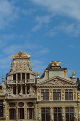 Gildehäuser in Brüssel - Detailaufnahme