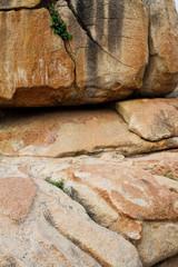 текстура желтого песчаного камня
