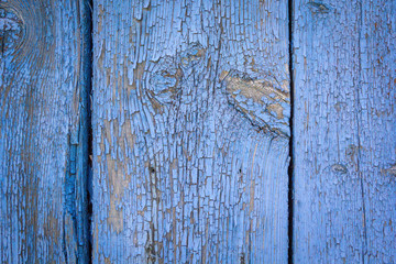 Old weathered wooden plank painted in blue color, wooden texture wall background