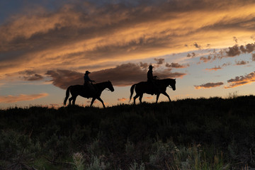 Horse wranglers, after the roundup, in silhouette, riding across the plains in Wyoming at sunset in in a rosy sky.