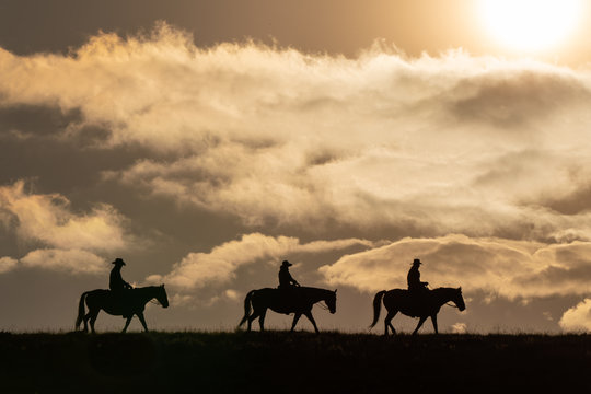 Horse wranglers, after the morning roundup, in silhouette, riding across the plains in Wyoming at sunrise in in a golden sky.