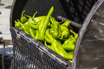 Fresh hatch chilis in an outdoor barrel roaster getting ready to be cooked