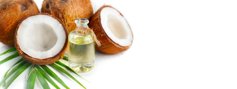 Coconut oil in a bottle with coconuts and green palm tree leaf isolated on a white background. Skincare concept