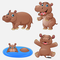 Cartoon funny hippos collection set
