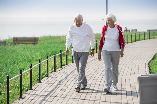 Full length portrait of active senior couple walking in park and smiling happily while chatting on the way, copy space