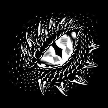 Monochrome dragon eye