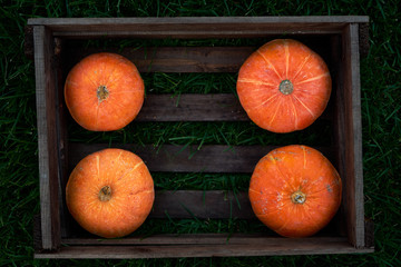 Small orange pumpkins stacked in wood crate