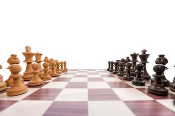 boxwood chessboard on white background wide angle shot