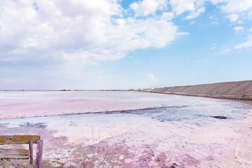 People gathering salt of pink salty Siwash Lake, colored by microalgae, famous for antioxidant properties, enriching water by beta-carotene at sunset