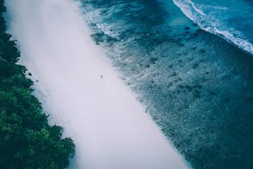 A walk along the reef