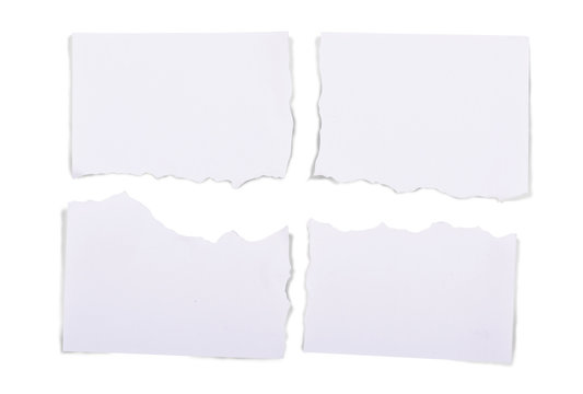 Ripped pieces of white paper
