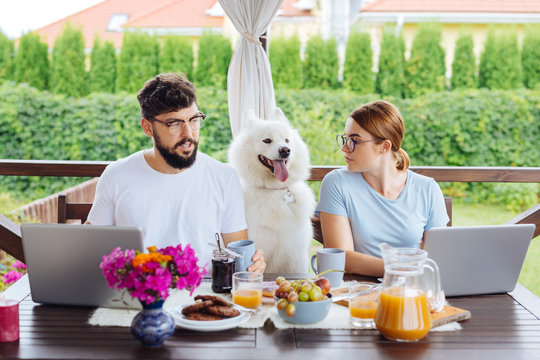 Family business. Couple working on their family business using silver laptops while having breakfast at home