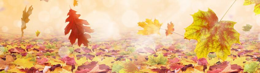 Herbst 176