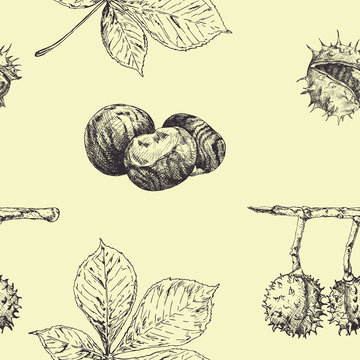 Autumn seamless vector pattern with chestnut leaves and nuts.Forest botanical background. Vintage fall seasonal decor. Hand drawn illustration
