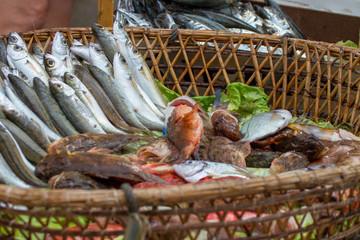 antico mercato del pesce di marsala