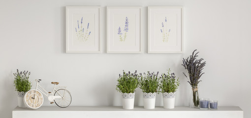 Real photo of three simple posters hanging on wall above shelf with bike shape clock, fresh lavender and candles
