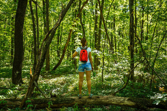 Young girl backpacker in jeans shorts with red backpack and sandals on his feet, walks on the road in the green forest in the sunshine outdoors in the summer time