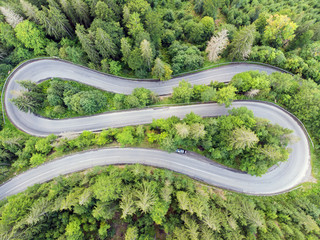 Curvy road in forest