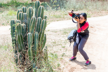 A young woman with a camera is photographing a large cactus.Concentrated girl photographing with a funny position and mimic.