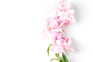peonies flowers close-up background. flat lay, top view, holiday concept